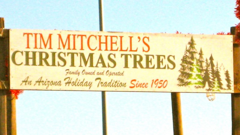 Jayne Mitchell (Tim Mitchells Christmas Trees)